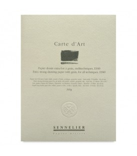 Sennelier Carte d'Art Drawing Pad Multitechnique 15 Sheets