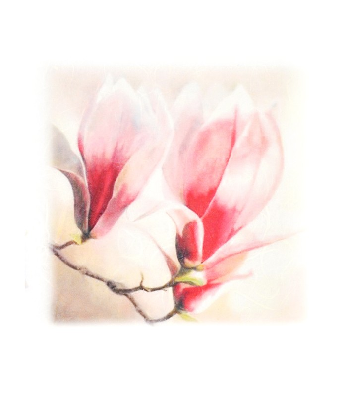 Decorative Rice Paper Magnolia Flowers Cobea 30 X 40 Cm 25 G M