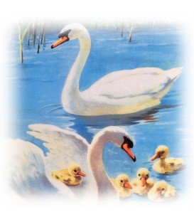 "Decorative Rice Paper ""Swans"" Cobea 30 x 40 cm 25 g / m²"