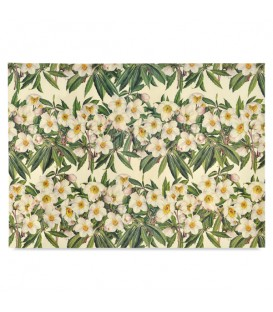 "Decorative Paper ""White Flowers"" Tassotti 50 x 70 cm 85 g/m²"