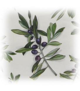 "Decorative Paper ""Olive Branches"" Tassotti 50 x 70 cm 85 g/m²"