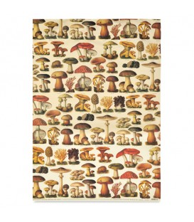 "Decorative Paper ""Mushrooms"" Tassotti 50 x 70 cm 85 g/m²"