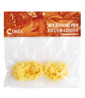 Set of two small sponges for decoration Cobea